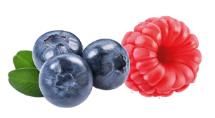 Forest berry and raspberry